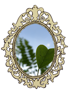 edited 2'' leaf-frame